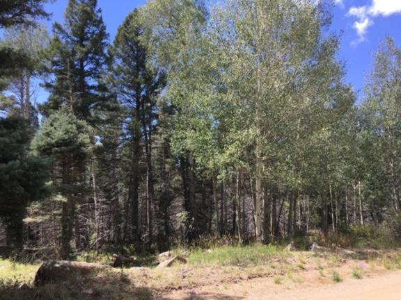 Lot 1434 Cheerful Way, Angel Fire, NM 87710 (MLS #100674) :: The Chisum Group