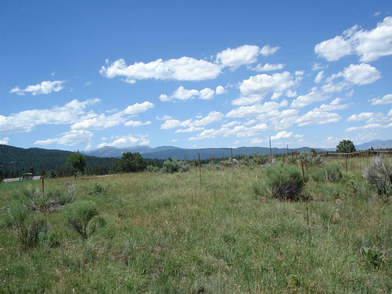 Lot 198 Preston Trail - Photo 1