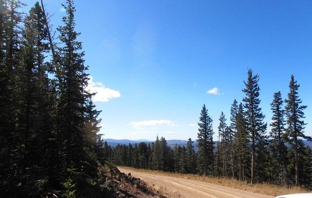 26,27,28 Happy Way, Angel Fire, NM 87710 (MLS #100770) :: The Chisum Group
