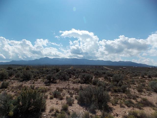 9G Arroyo Del Alamo, Ranchos de Taos, NM 87557 (MLS #100777) :: The Chisum Group