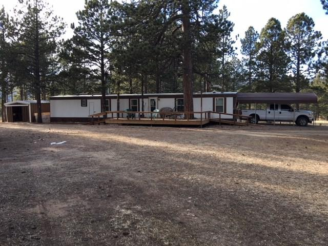 3602A Hwy 434, Angel Fire, NM 87710 (MLS #101056) :: Page Sullivan Group | Coldwell Banker Lota Realty