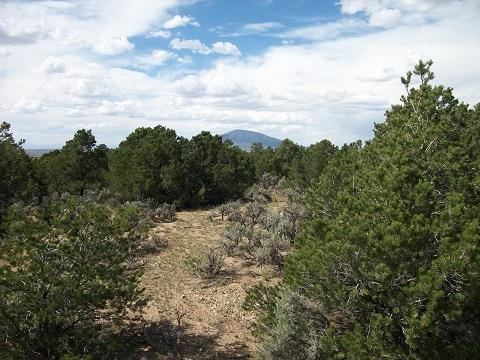 B-006 Acequia Madre Del Llano, Arroyo Hondo, NM 87513 (MLS #101137) :: The Chisum Group