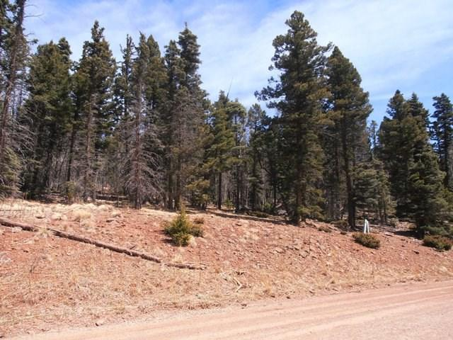 1497 El Camino Real, Angel Fire, NM 87710 (MLS #101385) :: The Chisum Group