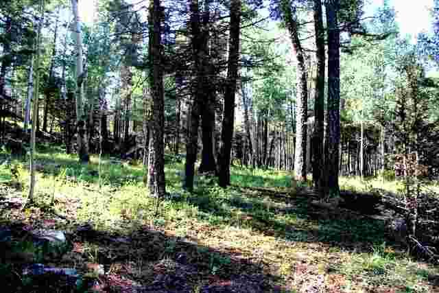 Lot 1229R Rainbow Overlook, Angel Fire, NM 87710 (MLS #101543) :: The Chisum Realty Group