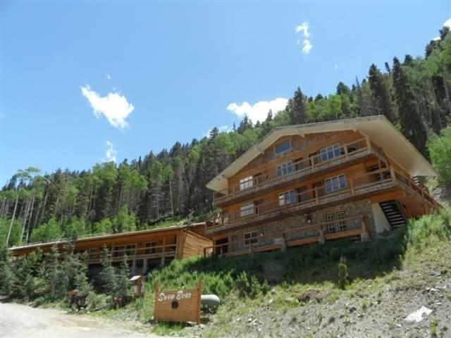 22 Firehouse Road, Taos Ski Valley, NM 87525 (MLS #101620) :: The Chisum Realty Group