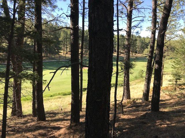 Lot N12 Champions Terrace, Angel Fire, NM 87710 (MLS #101841) :: The Chisum Realty Group