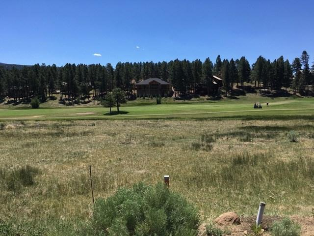 Lot 1191 Colonial Trail, Angel Fire, NM 87710 (MLS #102068) :: Page Sullivan Group | Coldwell Banker Lota Realty