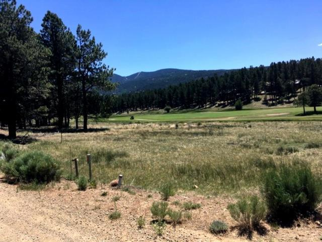 Lot 1190 Colonial Trail, Angel Fire, NM 87710 (MLS #102069) :: Page Sullivan Group | Coldwell Banker Lota Realty