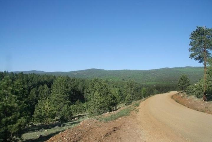 Lot 1213 Colonial Trail - Photo 1