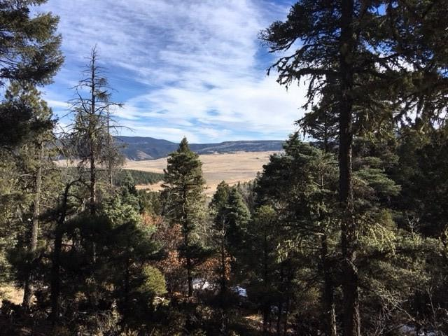 66 Elk Run Drive, Angel Fire, NM 87710 (MLS #102856) :: The Chisum Realty Group