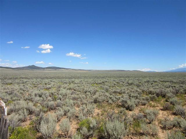 Off Forest Service Rd 601, Carson, NM 87517 (MLS #102914) :: The Chisum Realty Group