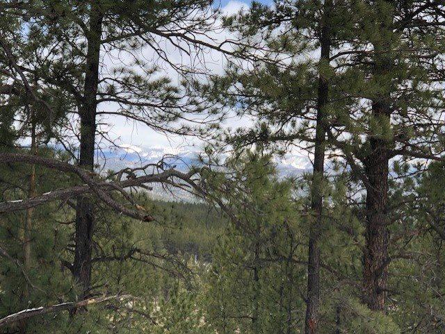 12 Snowmass Road, Angel  Fire, NM 87710 (MLS #103042) :: Page Sullivan Group | Coldwell Banker Mountain Properties