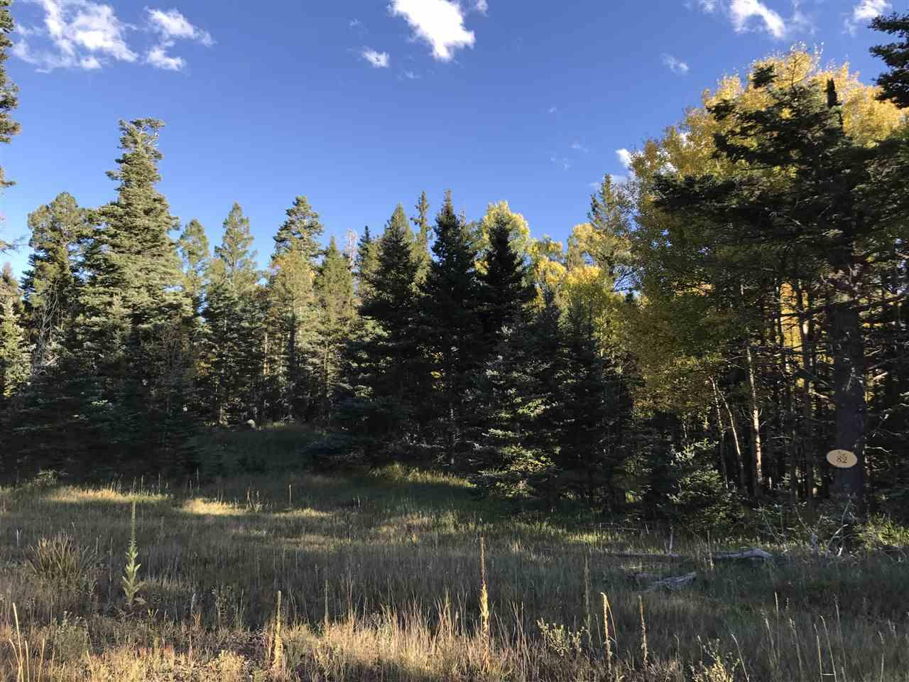 Lot 82 Elk Meadow - Photo 1