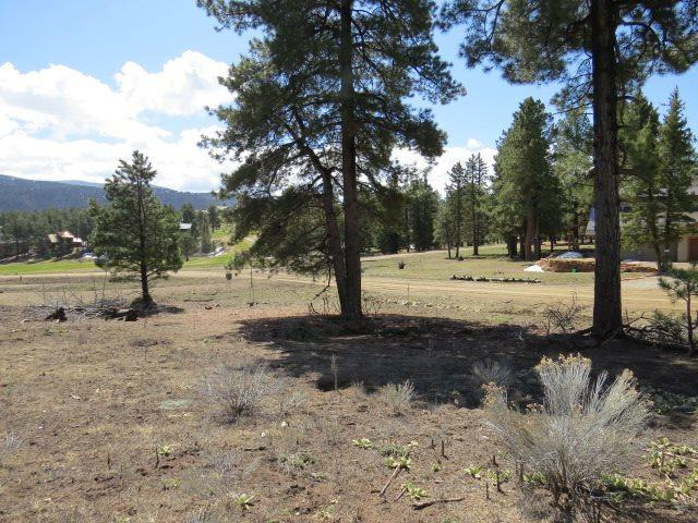 Lot 1253 Colonial Trail, Angel Fire, NM 87710 (MLS #103069) :: Page Sullivan Group | Coldwell Banker Mountain Properties