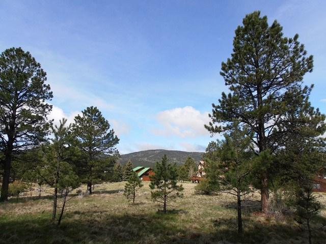 Lot 8 Blk A Vail Ave, Angel Fire, NM 87710 (MLS #103088) :: The Chisum Realty Group