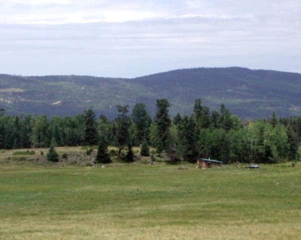 49 acres Adjacent To Valley Of The Utes - Photo 1