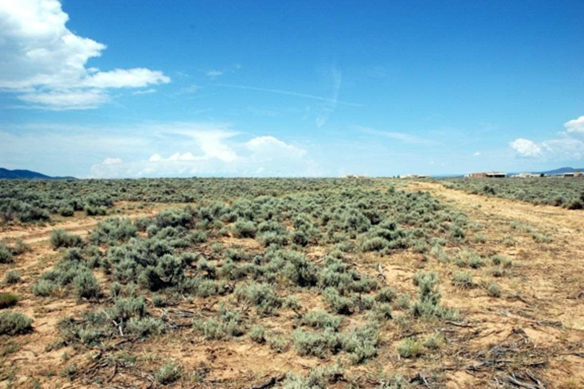 48 acres Cuchilla Road - Photo 1