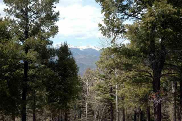Lot 324 South Vail Overlook, Angel Fire, NM 87710 (MLS #103168) :: The Chisum Realty Group