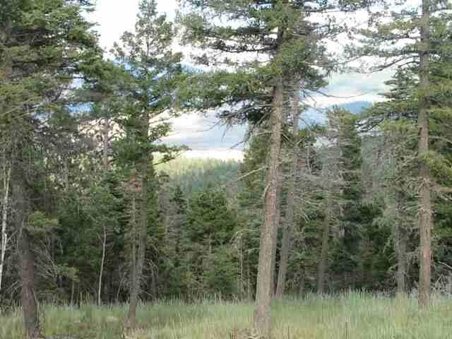 Lot 11 Palo Flechado Ridge Road, Angel Fire, NM 87710 (MLS #103441) :: The Chisum Realty Group