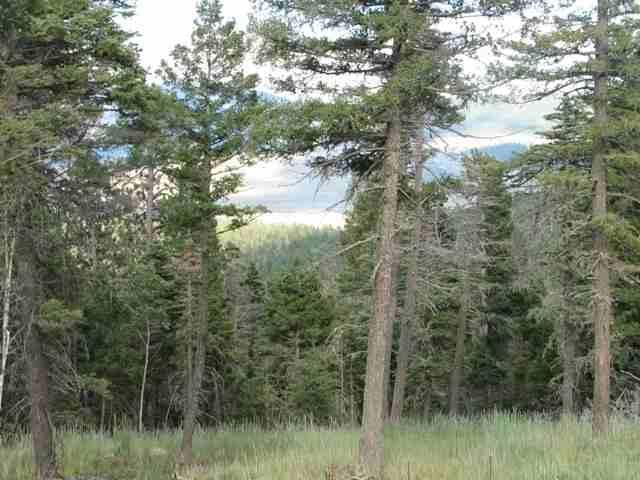 Lot 11 Palo Flechado Ridge Road, Angel Fire, NM 87710 (MLS #103441) :: Page Sullivan Group | Coldwell Banker Mountain Properties