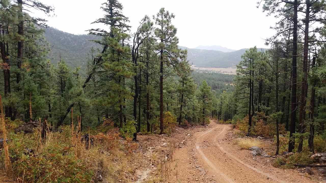 Tract 16 Trumball Canyon Road - Photo 1