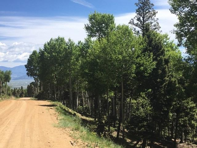 Via De Maria, Angel Fire, NM 87710 (MLS #103626) :: Page Sullivan Group | Coldwell Banker Mountain Properties