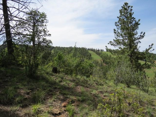 Lot 127a Valley Road, Angel Fire, NM 87710 (MLS #103732) :: Angel Fire Real Estate & Land Co.