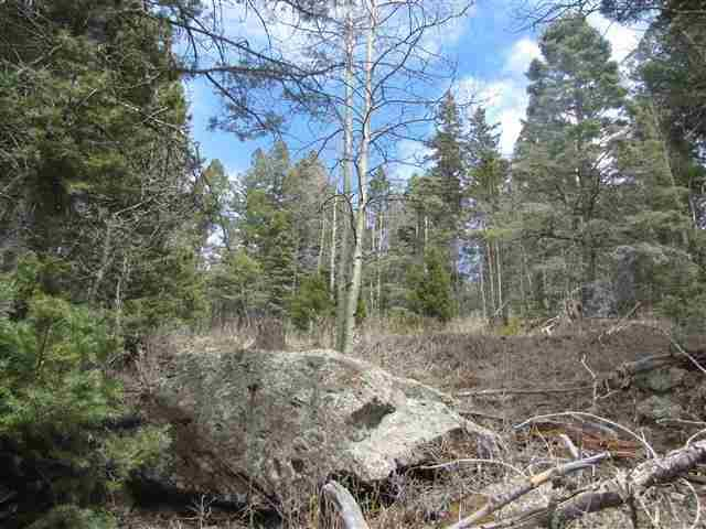 Lot 74 Elk Horn Drive, Angel Fire, NM 87710 (MLS #103755) :: Page Sullivan Group | Coldwell Banker Mountain Properties