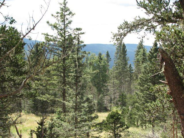 Lot 92 Shields Avenue, Angel Fire, NM 87710 (MLS #103836) :: Angel Fire Real Estate & Land Co.