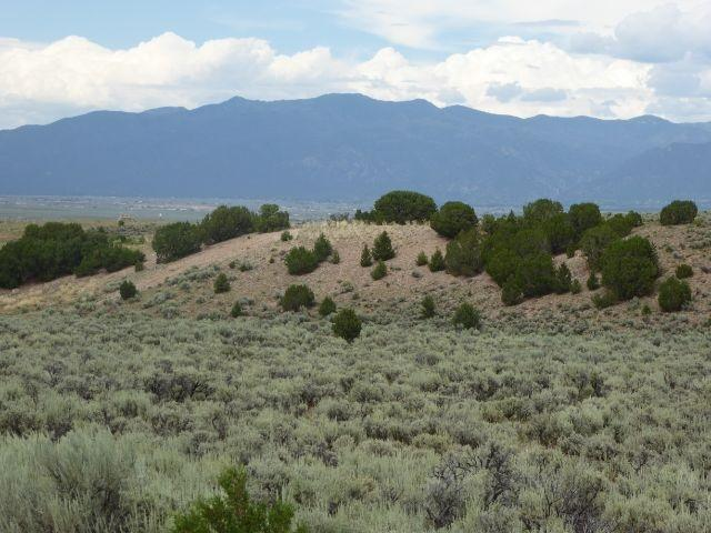 Tract B2 Cr 110, Ranchos de Taos, NM 87557 (MLS #103850) :: Page Sullivan Group | Coldwell Banker Mountain Properties
