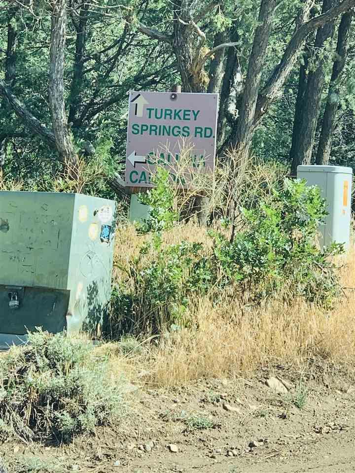 Turkey Springs - Photo 1