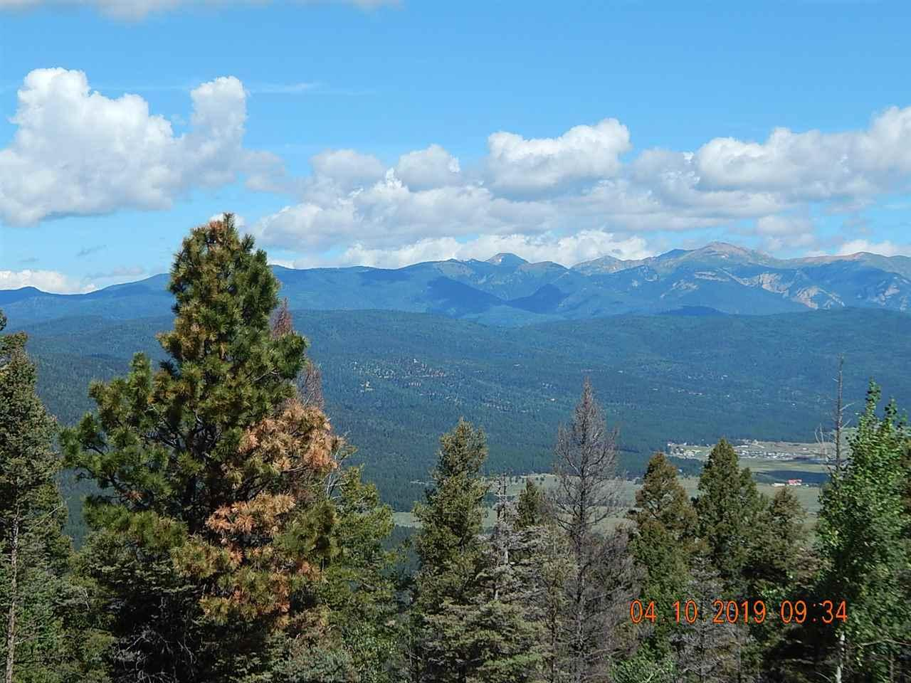 316 South Vail Overlook - Photo 1