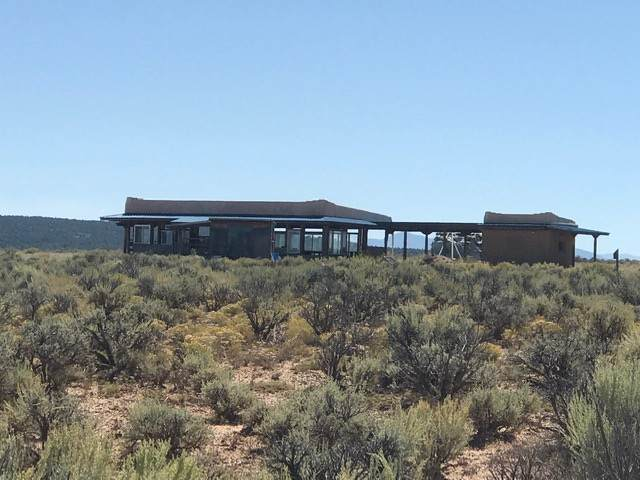 150 Coyote Moon, Tres Piedras, NM 87557 (MLS #104162) :: Angel Fire Real Estate & Land Co.