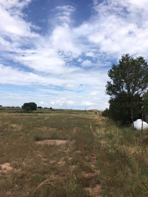 1182 Don Bernabe Garcia, El Prado, NM 87529 (MLS #104186) :: Angel Fire Real Estate & Land Co.