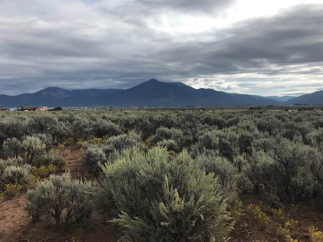 Lower Las Colonias Road, Taos, NM 87571 (MLS #104188) :: Page Sullivan Group