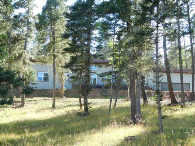 69 Via Del Rey, Angel Fire, NM 87710 (MLS #104190) :: Angel Fire Real Estate & Land Co.