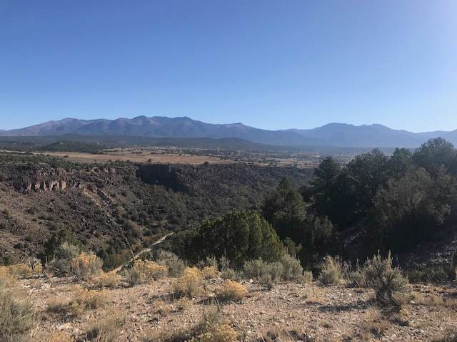 00 Tune Drive, Taos, NM 87571 (MLS #104319) :: The Chisum Realty Group