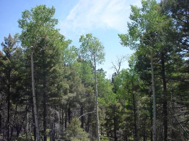 2982 Cieneguilla Overlook, Angel Fire, NM 87710 (MLS #104396) :: Angel Fire Real Estate & Land Co.