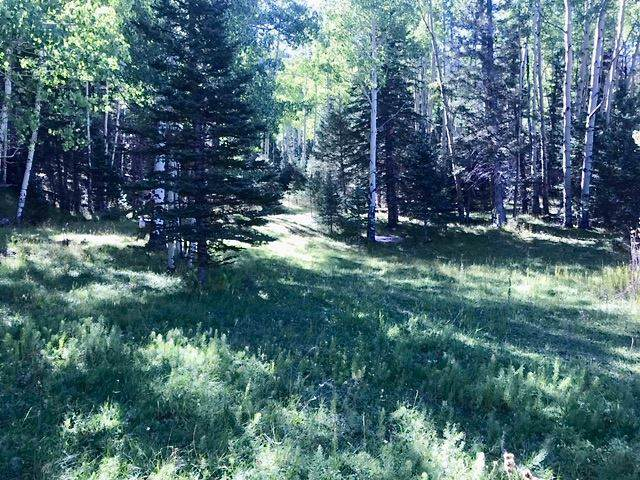 62 Black Copper Canyon, Red River, NM 87557 (MLS #104543) :: Angel Fire Real Estate & Land Co.