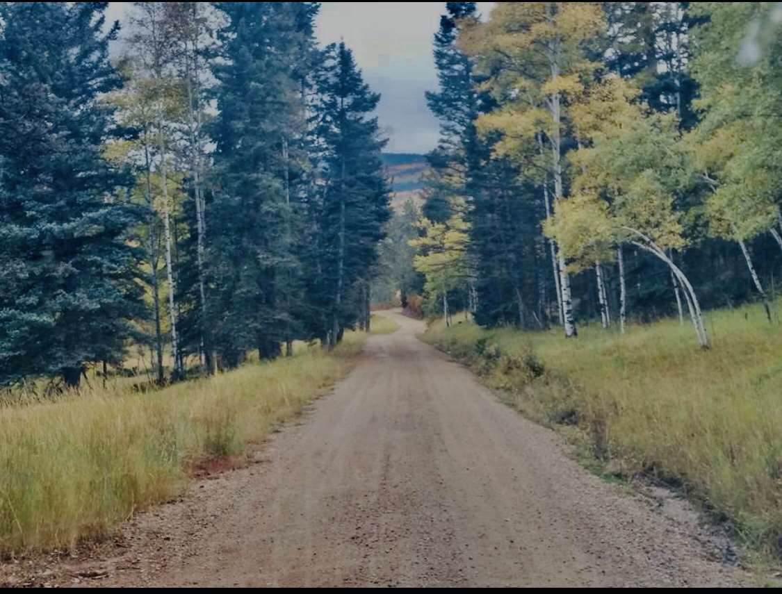 85 Valle Escondido Road - Photo 1