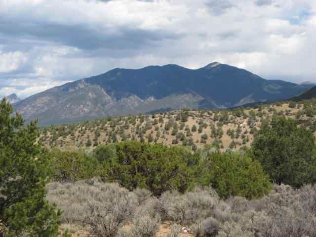 Lot 5 Canon Court, Taos, NM 87571 (MLS #104646) :: The Chisum Realty Group