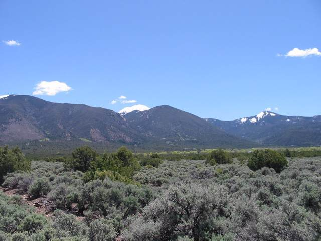 Jaracito Rd Tr2a, Questa, NM 87556 (MLS #104676) :: The Chisum Realty Group