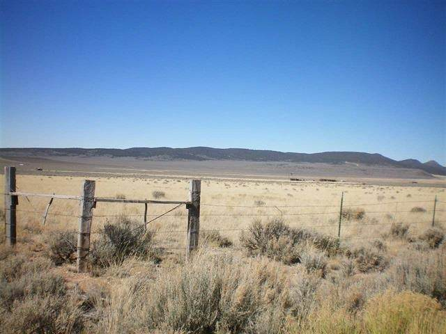 On Encantada Blvd, Amalia, NM 87512 (MLS #104690) :: Angel Fire Real Estate & Land Co.