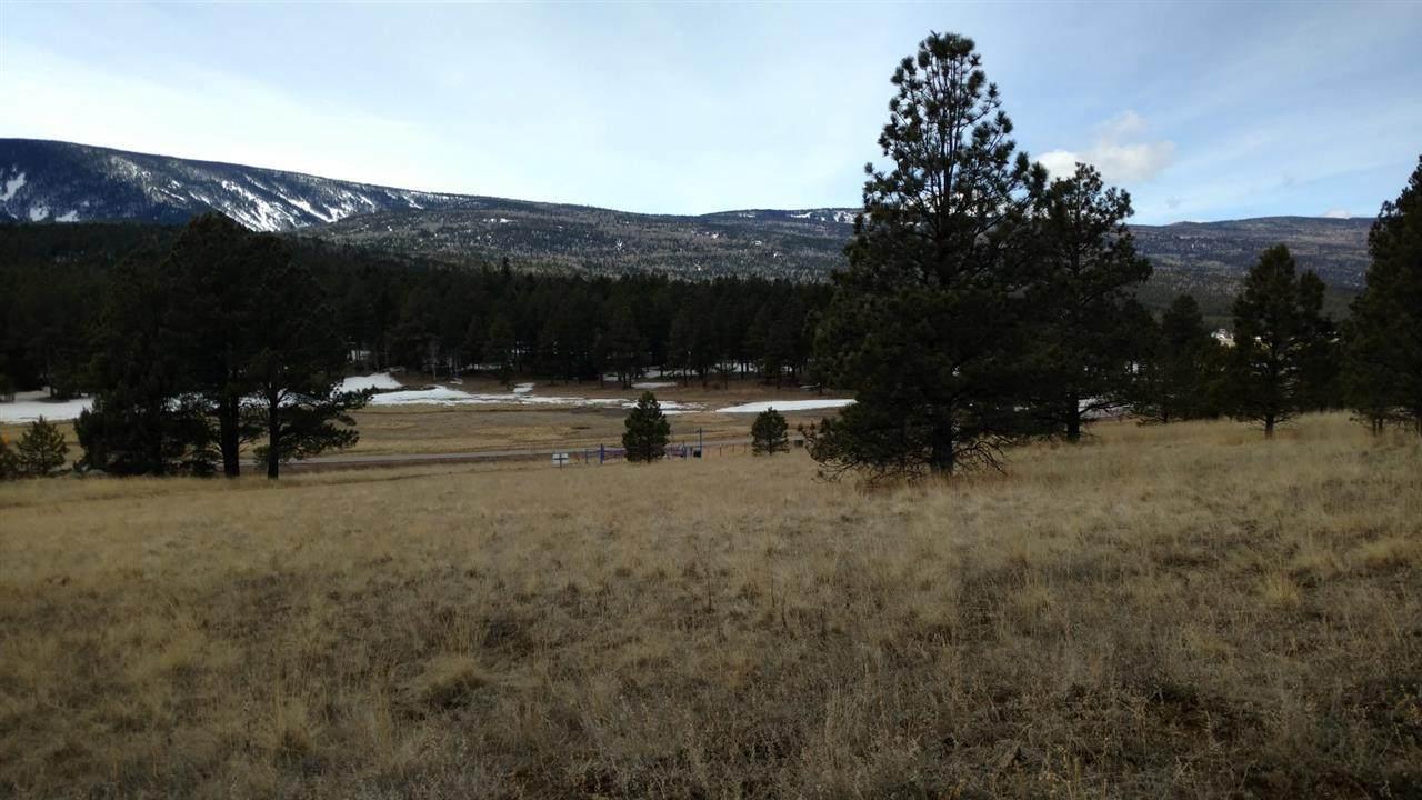Mora Ranch Road - Photo 1