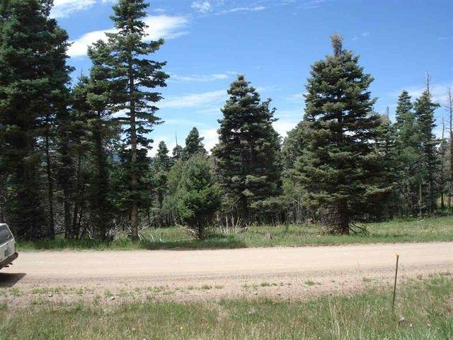 1454 Cheerful Way, Angel Fire, NM 87710 (MLS #104868) :: Angel Fire Real Estate & Land Co.