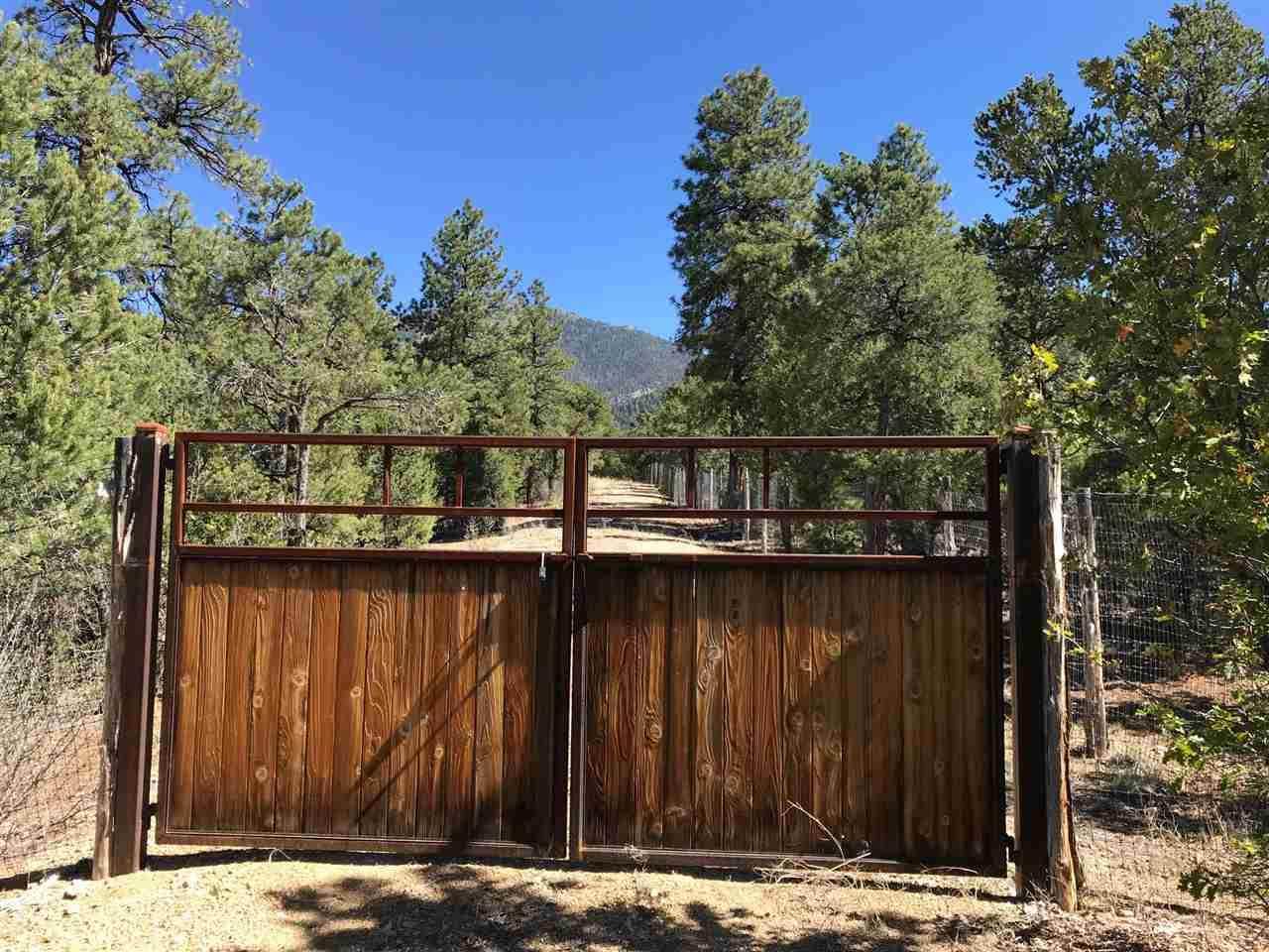 Parcel 16 Deer Mesa Road - Photo 1