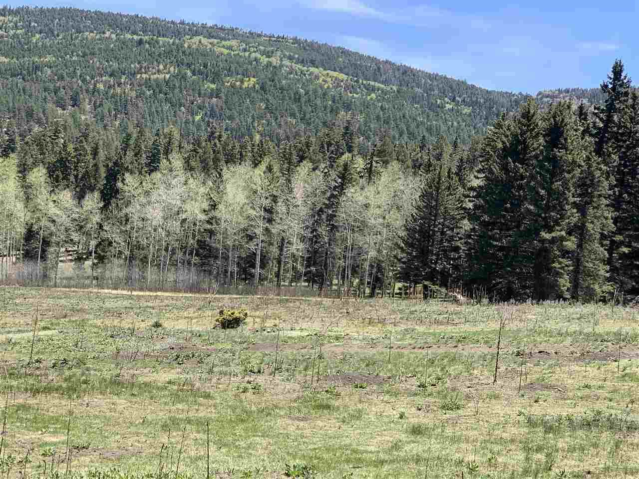 0 Valle Escondido Road - Photo 1
