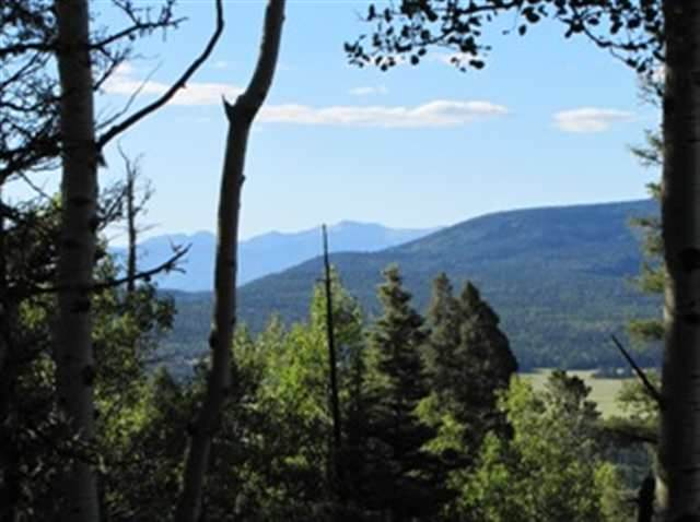 Lot 1 Spruce Court Hidden Lake, Angel Fire, NM 87710 (MLS #105129) :: The Chisum Realty Group