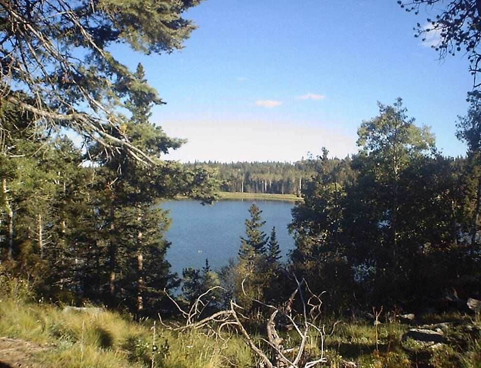 Lot 59 AB Hidden Lake Circle - Photo 1