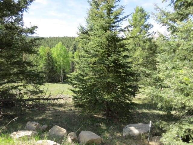 Lot 1333 San Mateo, Angel Fire, NM 87710 (MLS #105169) :: Angel Fire Real Estate & Land Co.